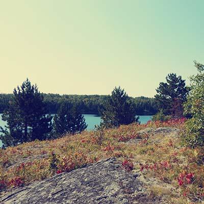 Voyageurs - Cruiser lake