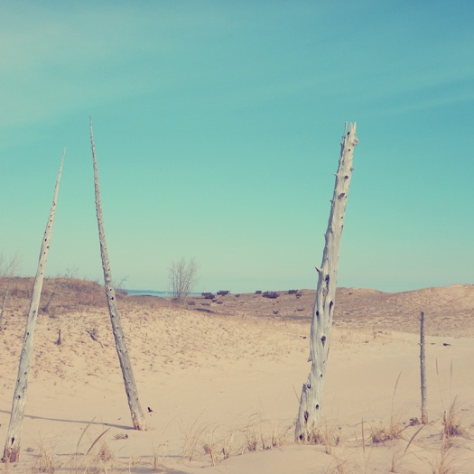 Parks a t Globe - Sleeping Bear Dunes
