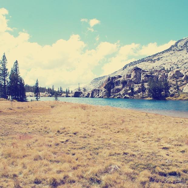 Parks a t Globe - Yosemite
