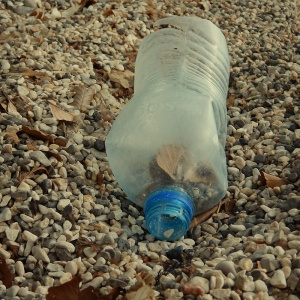 Litter - bottle
