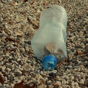 Litter - bottle