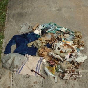 Litter - collection