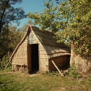 Biesbosch - old hut
